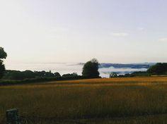 Bailando a solas con la primavera. #almohadasenvela #diegoojeda #porculpadelapoesia #landscape #sky #horizon #fog #nature #wild #free #freedom #travel #adventure #trekking #countryside #camino #caminodesantiago #route #santiagodecompostela #portomarin #etapas #galicia #verano #summer #remembering #tuesday #tbt #morning