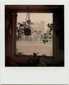 Room with a viewParis, France Polaroid Impossible Color 600 Polaroid Instax, Walk In The Light, Moon Setting, Polaroid Pictures, Period Dramas, Vintage Colors, Film Photography, Persona, Vintage Photos