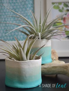 Yeah its Friday! I made these awesome Teal ombre clay pots awhile ago and you may have seen them in several of my decor pics, but today I'll finally share the tutorial. I love them so muc… Ombre Paint, Teal Ombre, Ombre Color, Diy Air Dry Clay, Diy Clay, Homemade Clay, Clay Crafts, Clay Flower Pots, Clay Pots