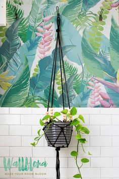 CALATHEA LEAVES PATTERN SELF-ADHESIVE WALLPAPER