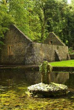 5th Century St. Patrick's Well ~ Ireland