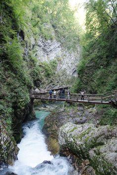 Gorges de Vintgar - Slovénie Road Trip Europe, Beau Site, Lake Bled, Voyage Europe, Genoa, Blog Voyage, Wonderful Places, Travel Destinations, Photos