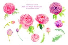 Wedding Watercolor Ranunculus by Corner Croft on Creative Market
