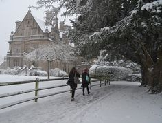 Warminster snow Boarding Schools, Let It Snow, Old Buildings, Winter Snow, Countryside, Britain, Natural Beauty, Architecture, Nature