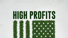 A young couple with a dream seek to build the world's first legal marijuana empire. #HighProfits