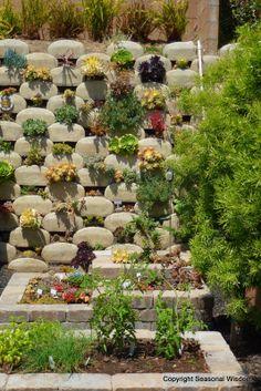 Superieur Vertical Garden, Seasonalwisdom.com Succulents Garden, Vertical Succulent  Gardens, Succulent Wall Planter
