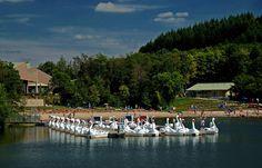 """Ach ja, wer Tretboot fahren will, ... und zwar mit einem ganz besonderen """"Weißer-Schwan-Tretboot"""", kann das z. B. auf dem Bostalsee. :-)"""