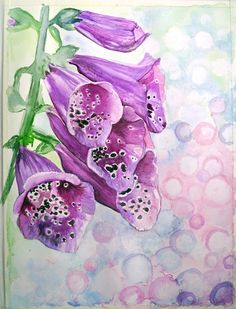 #flowers #fingerhut #dzwonki