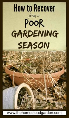 How to Recover from a Poor Gardening Season  What about recovering from being a poor gardener?!