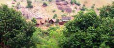 Yoga & Meditation in Neredu Valley