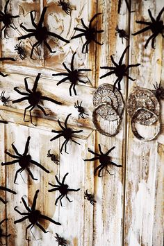 "Creepy backdrop - perfect for any Halloween party but especially for this ""Spiders + Spirits"" themed dessert table. #halloweendecor #halloween #spiders #halloweendesserttable #halloweendesserts #spikeddesserts"