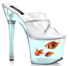 Those poor fish!!! Can you imagine going to a party in their point of view? All they would hear is BOOM-BOOM-BOOM....