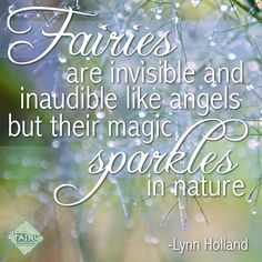 Go into the garden and look for the sparkle of fairy magic.