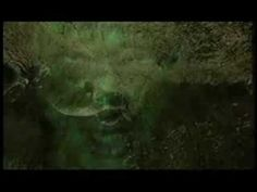MOONSPELL - The Butterfly FX