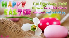 Happy Easter Quotes Here you find best Quotes of 2017 for Happy Easter Sunday. Easter Sunday Quotes are also available in images. Easter Quotes Images, Easter Sunday Images, Easter Egg Pictures, Happy Easter Quotes, Happy Easter Wishes, Happy Easter Sunday, Happy Easter Greetings, Valentines Day Wishes, Sunday Wishes