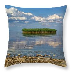 Reed island on the lake. Pillow Sale, Travel Photographer, Basic Colors, Pillow Inserts, Color Show, Countryside, Colorful Backgrounds, Fine Art America, Canvas Prints