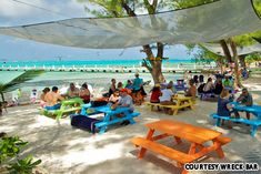 Wreck Bar, Grand Cayman - worlds best beach bars Rum Point Grand Cayman, Grand Cayman Island, Cayman Islands, Vacation Destinations, Dream Vacations, Beach Bars, Island Beach, Do It Yourself Home, Oh The Places You'll Go