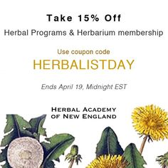15% off all OnlineHerbalism Courses / spring is a wonderful time to study herbs after all. 💛🌼🌾💛