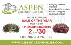 "10"" Hanging Baskets are on Sale ~ 2 for $30 ~ May 12-19 May 12, Hanging Baskets, Perennials, Planters, Herbs, Retail, Spring, Fall Hanging Baskets, Planter Boxes"