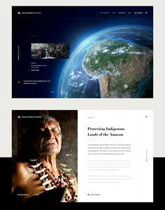 Some site designs for Leonardo DiCaprio Foundation. Not live.