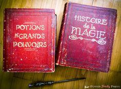 Potter frenchy party - Hogwarts witchcraft books, spellbooks - Harry Potter DIY - livres de magie de Poudlard