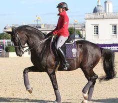 Kristina Sprehe, aged 26, one of the stars of the German team, training Desperados. © 2012 Ken Braddick