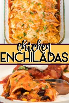 The BEST Chicken Enchilada Recipe! Shredded chicken rolled up in a soft, flour tortilla with cheese and all of your favorite fillings and toppings and smothered with enchilada sauce! A family favorite homemade recipe! Sourcream Chicken Enchiladas, Best Chicken Enchilada Recipe, Enchilada Recipes, Enchilada Sauce, Shredded Chicken Recipes, Easy Chicken Recipes, Beef Recipes, Cooking Recipes, Recipe Chicken