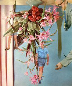 Flower Arrangement 13 by Catalina Schliebener
