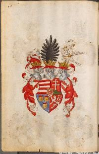 Image 00150 Kaiser Karl, Friedrich Ii, Painting, Image, Art, Coat Of Arms, Roman Emperor, Munich Germany, Family Crest