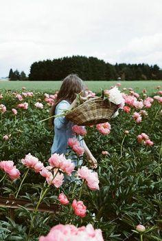 une fille ramasse les roses