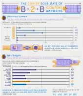 he Content Marketing Institute recently released The State of B2B Content Marketing in North America. It's a f
