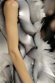 Fashion  Iris van Herpen // Groninger Museum