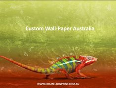 Chameleon Print Group specialises in an extensive range of Digital Printing Services Australia. We are proud to offer a wealth of knowledge based on the diverse experience from our combined offerings of the Sticker Company and McTaggarts the Printers. Custom Sticker Printing, Sign Printing, Printing Labels, Custom Stickers, Online Printing, Bumper Stickers, Stationery Printing, Wall Art Wallpaper, Custom Wallpaper