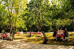 Hayalbahcesi Outdoor Furniture, Outdoor Decor, Park, Parks, Backyard Furniture, Lawn Furniture, Outdoor Furniture Sets