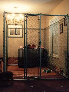 1000 images about indoor housing examples on pinterest for Indoor pig pen ideas