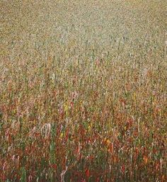 """""""Claim 4 150 140"""" Mischtechnik Modernes großformatiges Gemälde auf Leinwand _ Der chaotische Farbauftrag kombiniert mit subtilen räumlichen Effekten der Malerei lässt """"Organisches"""" entstehen, das durch die Größe des Bildes """"abgesteckt"""" wird. So ist der Titel """"Claim 4"""" - zu deutsch Anrecht oder Anspruch Nummer 3 – in Bezug zur Fläche """"150 140"""" (150 x 140) zu verstehen."""