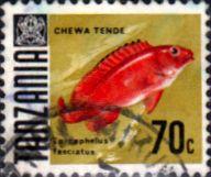 Tanzania 1967 Fish Fine Used SG 150 Scott 27 Other Tanzania and British Commonwealth Stamps HERE!