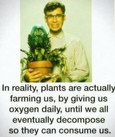 Plants are actually farming us Dankest Memes, Funny Memes, Hilarious, Funny Tweets, My Demons, Dumb Jokes, Motivation, Edgy Memes, Land Scape