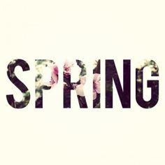 in attesa della primavera dei suoi colori dei suoi odori #fiori #primavera #coloripastello
