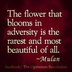 Mulan m'a apprit tellement de choses ❤️