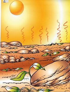 Parable of the sower 4