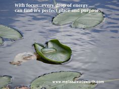 With focus, every drop of energy finds it place and purpose