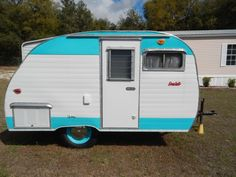 Adorable 1960's Scotty For Sale