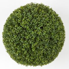 """20"""" Artificial Outdoor Boxwood Topiary Balls for special events and venues.    Commercial quality plant like features Tutone Green Wire frame - hollow interior Limited UV protection Leaf style only in 20"""" with PVC fabric Don't see what you need?  Call us for further customized products."""