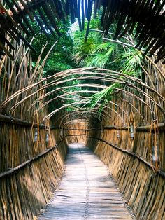 Bamboo Landscape, Landscape Stairs, Beach Cabana, Tulum Beach, Bali House, Bamboo House Design, Bungalow, Halls, Cool Tree Houses