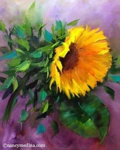 Purple Spangle Sunflower and a New DVD - Flower Paintings by Nancy Medina, painting by artist Nancy Medina