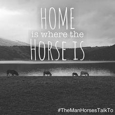 Home is where the horse is. #themanhorsestalkto #horsequotes