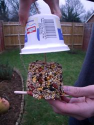How to make a bird food cake