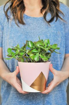 15 Metallic Planters to Add Some Sparkle to Your Indoor Garden | Brit + Co