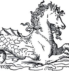 Isn't this marvelous?!! Today I'm sharing a Mythical Sea Horse image!